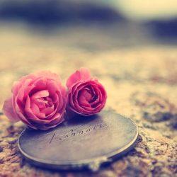 love_cinta_sejati